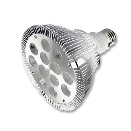 12W PAR38 white light LED lamp