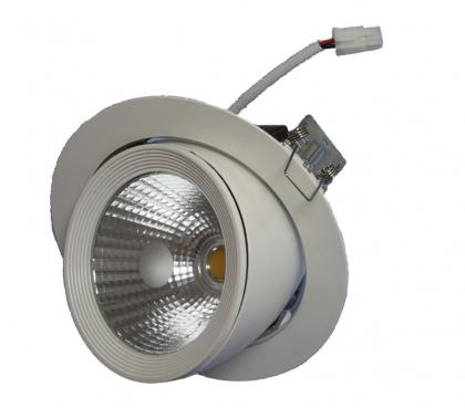 20W Lustrous Adjustable LED Down Light