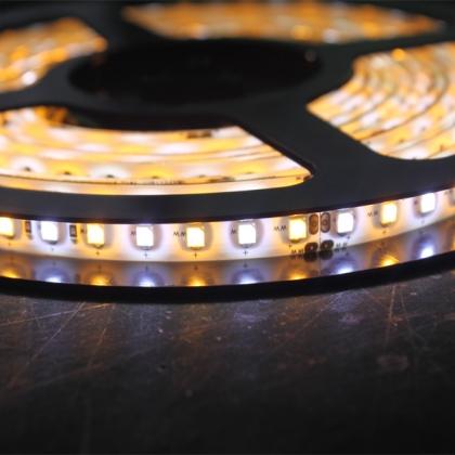 3528 Color Temperature Adjustable LED Strip