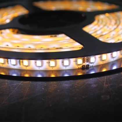 3528 Color Temperature Adjustable LED Strip