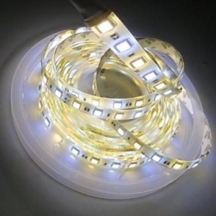 Weatherproof IP64 CCT adjustable LED strip